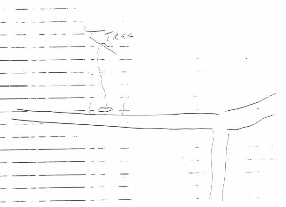 Mr. S's Sketch